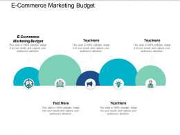 E Commerce Marketing Budget Ppt Powerpoint Presentation Styles Deck Cpb
