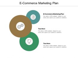 E Commerce Marketing Plan Ppt Powerpoint Presentation File Layout Cpb