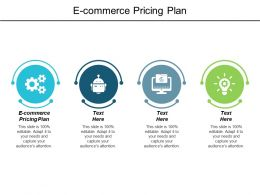 E Commerce Pricing Plan Ppt Powerpoint Presentation Pictures Cpb