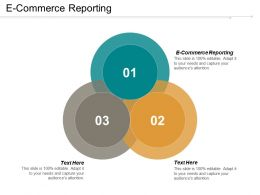 E Commerce Reporting Ppt Powerpoint Presentation Infographic Template Guide Cpb