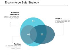E Commerce Sale Strategy Ppt Powerpoint Presentation Pictures Graphic Images Cpb