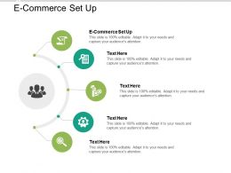 E Commerce Set Up Ppt Powerpoint Presentation Icon Design Ideas Cpb