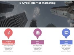 E Cycle Internet Marketing Ppt Powerpoint Presentation Gallery Icons Cpb