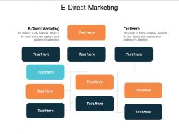 E Direct Marketing Ppt Powerpoint Presentation Icon Template Cpb