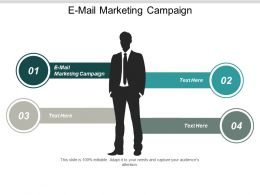 E Mail Marketing Campaign Ppt Powerpoint Presentation Infographic Template Graphics Cpb