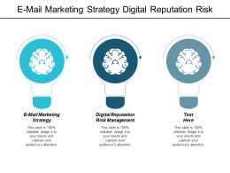 E Mail Marketing Strategy Digital Reputation Risk Management Department Structure Cpb