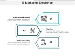 E Marketing Excellence Ppt Powerpoint Presentation Outline Layout Cpb