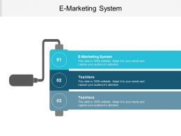 E Marketing System Ppt Powerpoint Presentation File Templates Cpb