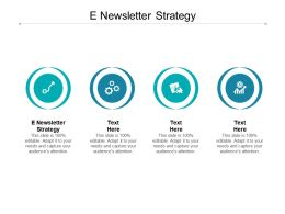 E Newsletter Strategy Ppt Powerpoint Presentation Ideas Layouts Cpb