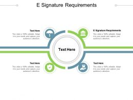 E Signature Requirements Ppt Powerpoint Presentation Icon Outfit Cpb