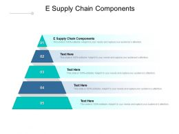 E Supply Chain Components Ppt Powerpoint Presentation Outline Cpb