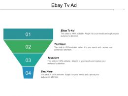 Ebay Tv Ad Ppt Powerpoint Presentation Gallery Templates Cpb