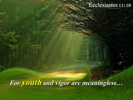 Ecclesiastes 11 10 For Youth And Vigor Powerpoint Church Sermon