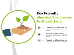 Eco Friendly Showing Two Leaves In Man S Hand