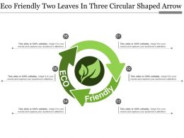 Eco Friendly Two Leaves In Three Circular Shaped Arrow