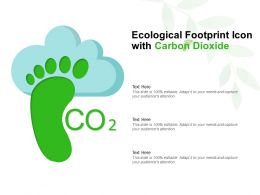 Ecological Footprint Icon With Carbon Dioxide