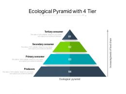Ecological Pyramid With 4 Tier