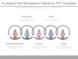 Ecological Risk Management Hierarchy Ppt Templates