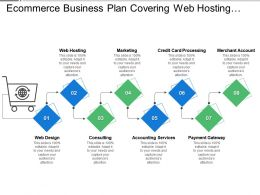 Ecommerce Business Plan Covering Web Hosting Accounting Services