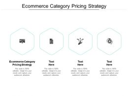 Ecommerce Category Pricing Strategy Ppt Powerpoint Model Cpb