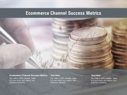 Ecommerce Channel Success Metrics Ppt Powerpoint Presentation Portfolio Graphic Images Cpb
