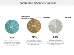 Ecommerce Channel Success Ppt Powerpoint Presentation Gallery Demonstration Cpb