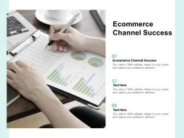 Ecommerce Channel Success Ppt Powerpoint Presentation Slides Themes Cpb