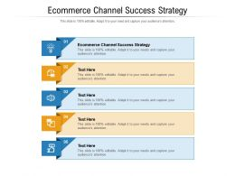 Ecommerce Channel Success Strategy Ppt Powerpoint Presentation Layouts Example Topics Cpb