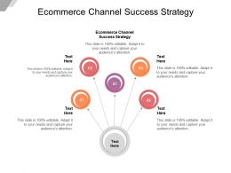 Ecommerce Channel Success Strategy Ppt Powerpoint Presentation Outline Maker Cpb