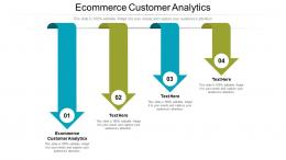 Ecommerce Customer Analytics Ppt Powerpoint Presentation Infographic Template Microsoft Cpb