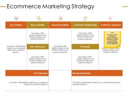 Ecommerce Marketing Strategy Ppt Powerpoint Presentation Portrait