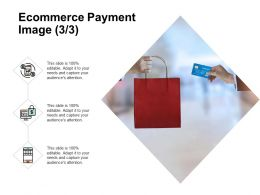 Ecommerce Payment Image Business Ppt Powerpoint Presentation Infographics Icon