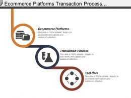 Ecommerce Platforms Transaction Process Application Development Niche Mark
