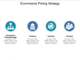 Ecommerce Pricing Strategy Ppt Powerpoint Presentation File Slide Cpb