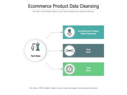 Ecommerce Product Data Cleansing Ppt Powerpoint Presentation Portfolio Design Ideas Cpb