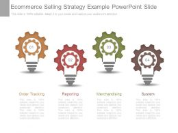Ecommerce Selling Strategy Example Powerpoint Slide
