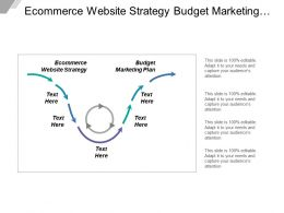 Ecommerce Website Strategy Budget Marketing Plan Distribution Channels Cpb