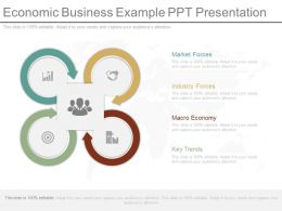 Economic Business Example Ppt Presentation