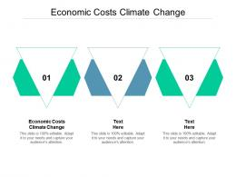 Economic Costs Climate Change Ppt Powerpoint Presentation Portfolio Visuals Cpb