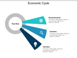 Economic Cycle Ppt Powerpoint Presentation Gallery Visuals Cpb