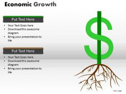 Economic Growth PPT 10