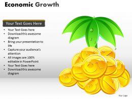 Economic Growth PPT 2