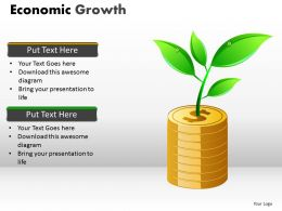 Economic Growth PPT 4