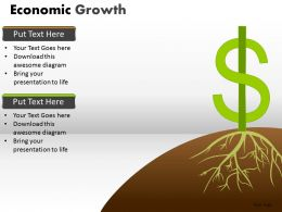 Economic Growth PPT 9