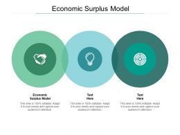 Economic Surplus Model Ppt Powerpoint Presentation Infographic Outline Cpb