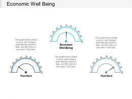 Economic Well Being Ppt Powerpoint Presentation Portfolio Designs Cpb