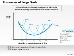 Economies Of Large Scale Powerpoint Presentation Slide Template