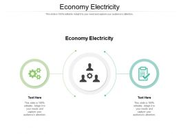 Economy Electricity Ppt Powerpoint Presentation Show Gallery Cpb