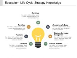 Ecosystem Life Cycle Strategy Knowledge Management Strategy Modelling Cpb
