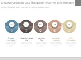 Ecosystem Of Big Data Value Management Powerpoint Slide Information